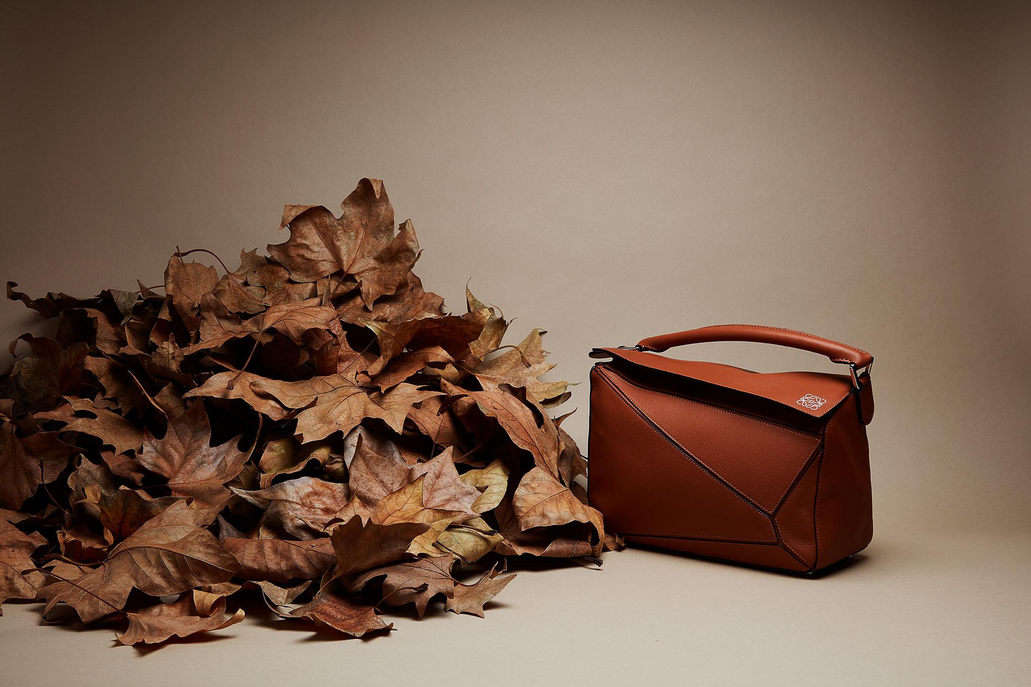 Maroquinerie d'automne : Loewe
